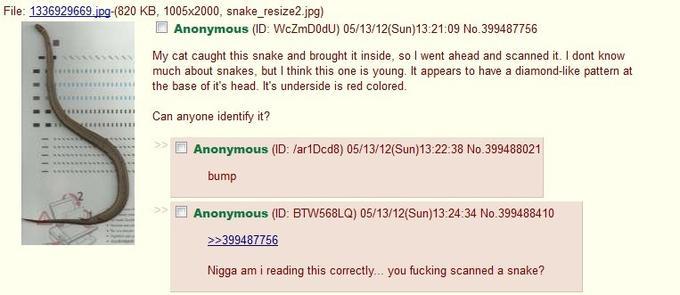4chan in a nutshell.