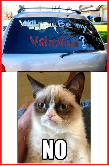 Grumpy Cat.... Will You Be My Valentine?