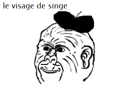le french face