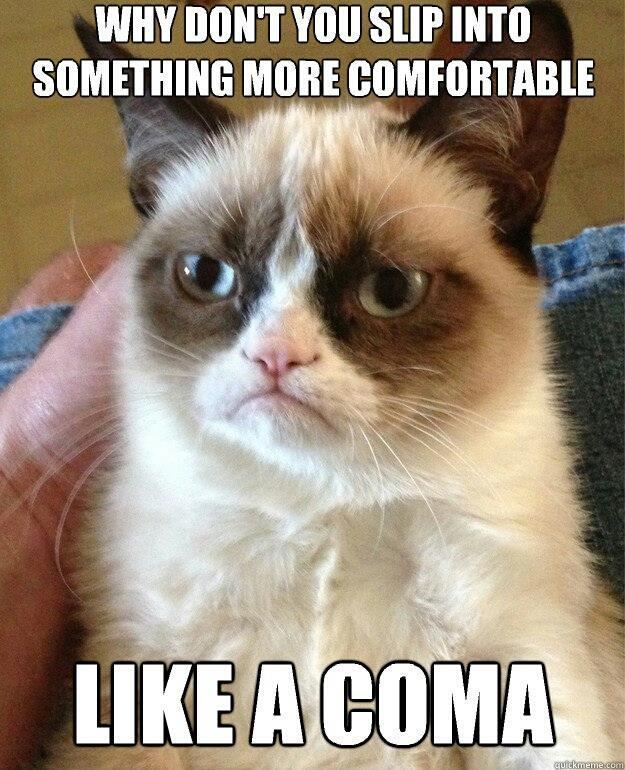 Grumpy cat 5ca
