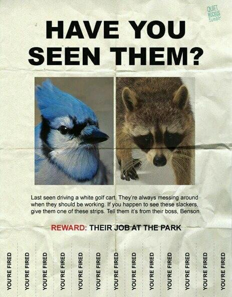 Have You Seen Them?