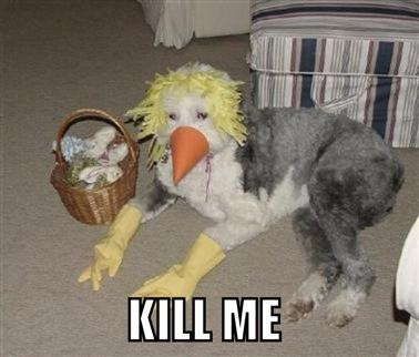 KILL ME Scarecrow Dog?