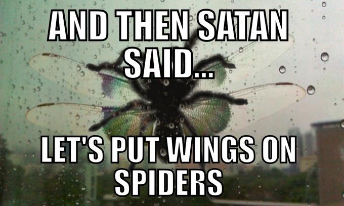 And Then Satan Said, Let's out wings on Spiders
