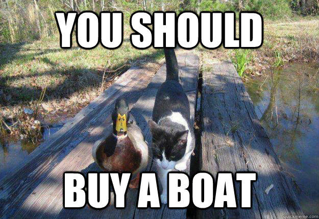 613 i should buy a boat cat know your meme