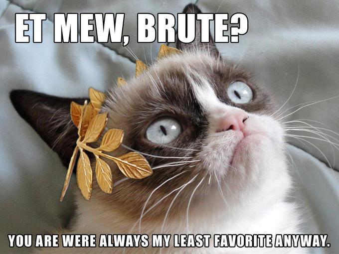 Grumpy Cat Ides Of March