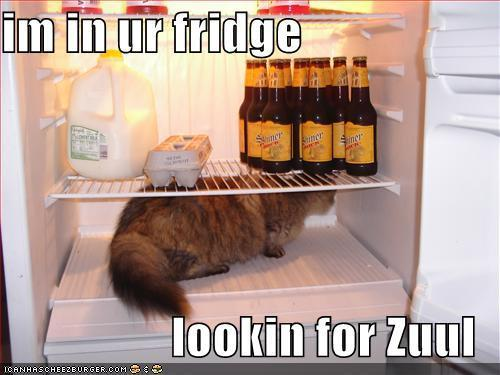 i'm in ur fridge lookin for Zuul
