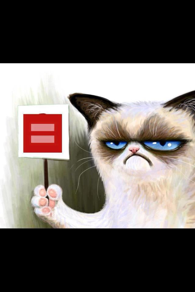 Red Equal Sign Grumpy Kitty