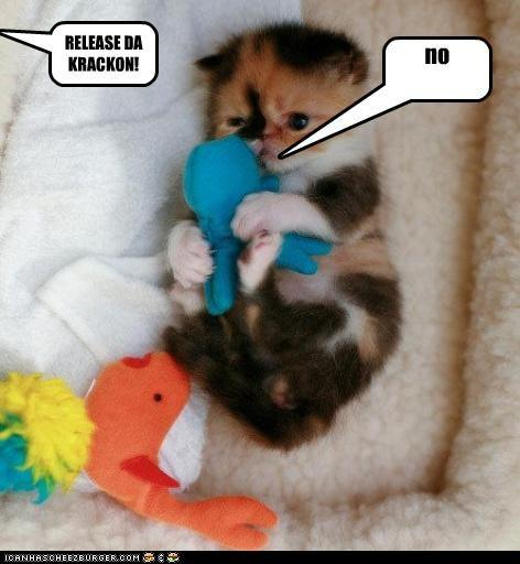 Release the Kraken kitten