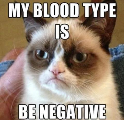 302 grumpy cat blood type grumpy cat know your meme