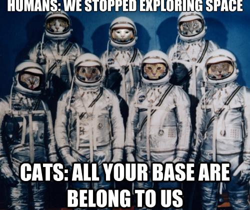 Catsplorers