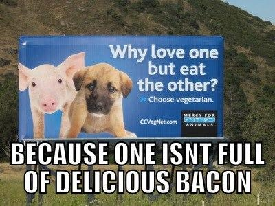 PETA Billboard Question
