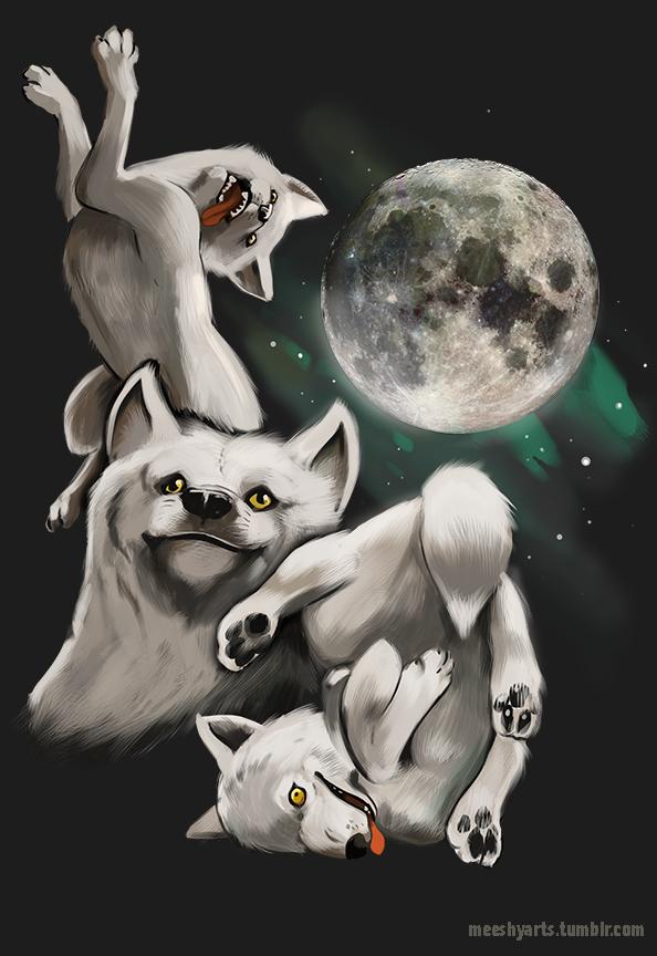 3c0 three wolf moon moon three wolf moon know your meme