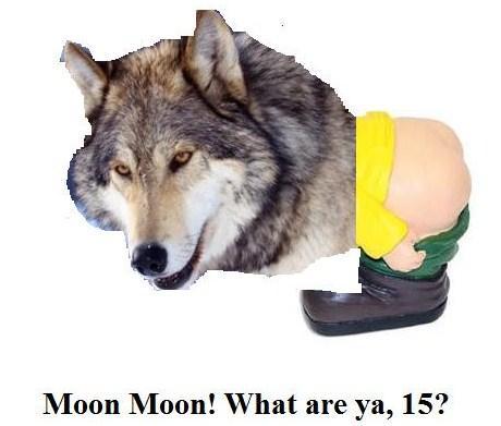 Moon Moon Mooning