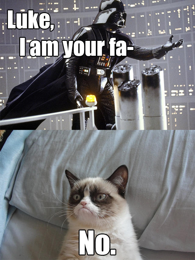 Grumpy cat has no time for long, melodramatic denial