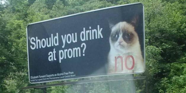 Grumpy Cat in Anti-Drinking PSA Billboard