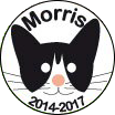 Logo for Morris candidacy