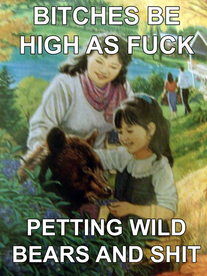 Wild Bears N Shit