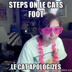 Steps on Le Cats Foot Le Cat Apologizes