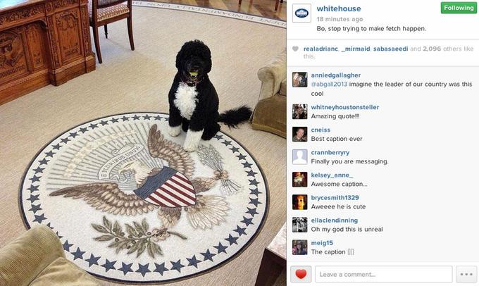 The White House makes a Mean Girls joke