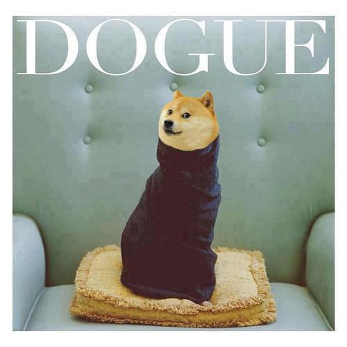 Presenting Dogue