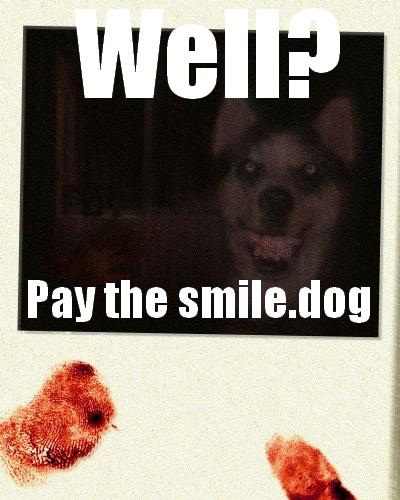 PAY THE SMILE.DOG