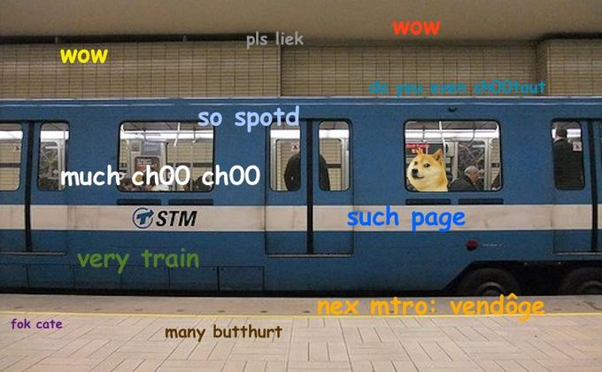Doge in Montreal Metro