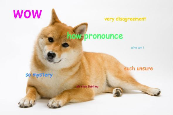 How To Pronounce Doge?
