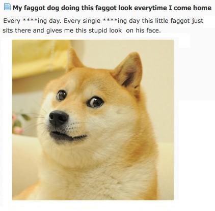 Faggot doge
