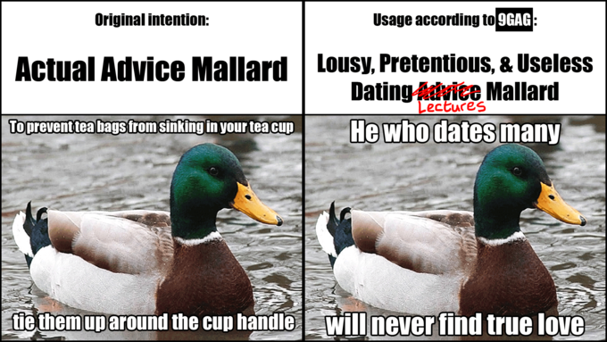Usage of Actual Advice Mallard