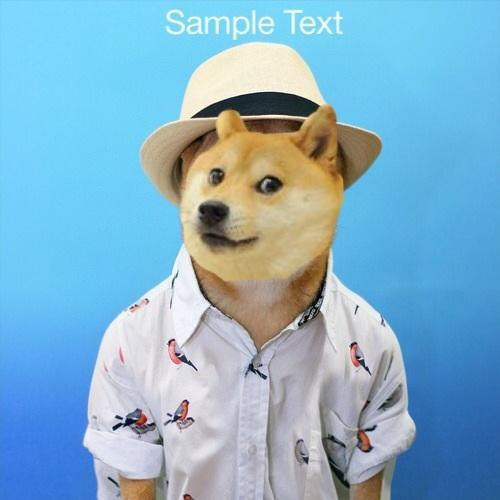 Sample Text Doge