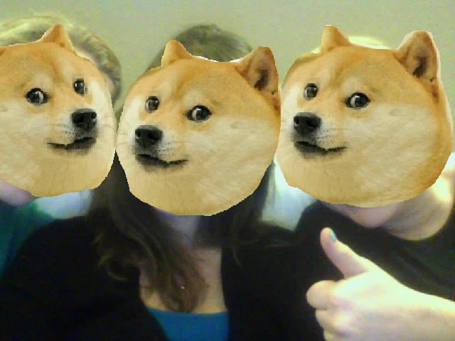 All the Doge Ladies