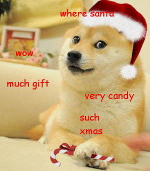 Doge is waiting for Christmas