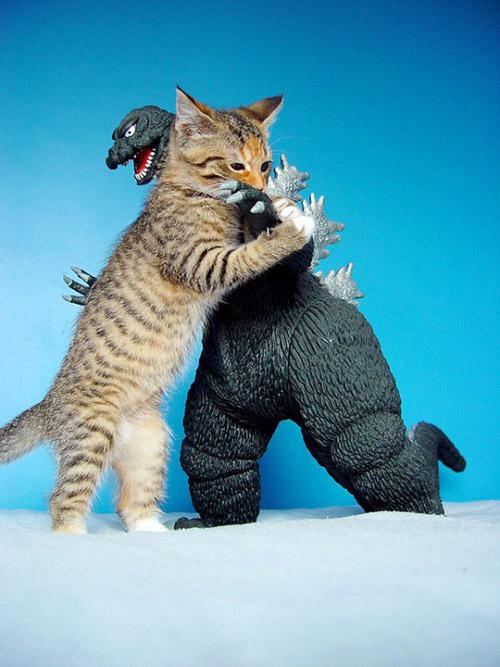 Kitty Hugs Godzilla