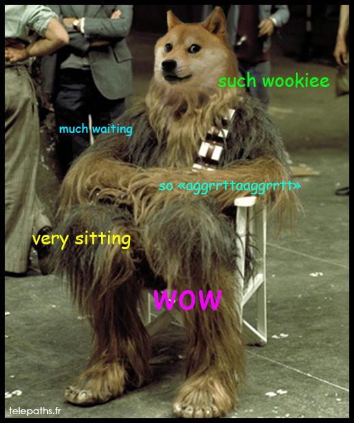 Doge Wars