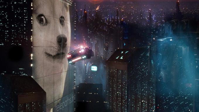 Doge Runner