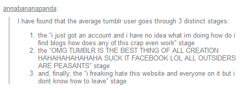 The 3 Stages of a Tumblr User