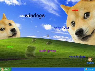 c63 doge microsoft windows xp bliss wallpaper know your meme,Doge Meme Wallpaper