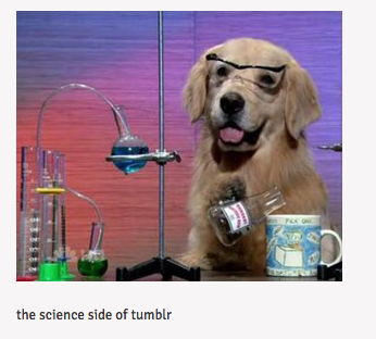 Tumblr Science Dog