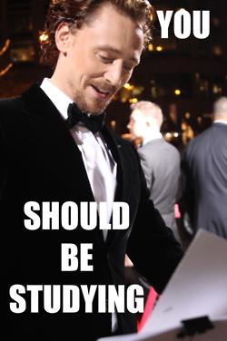 Hiddleston Studying
