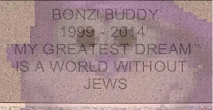 Bonzi Buddy's Grave