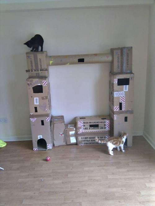tiered forts