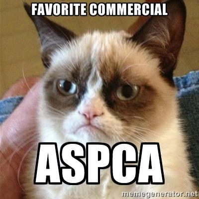 894 grumpy cat aspca aspca commercial parodies know your meme,