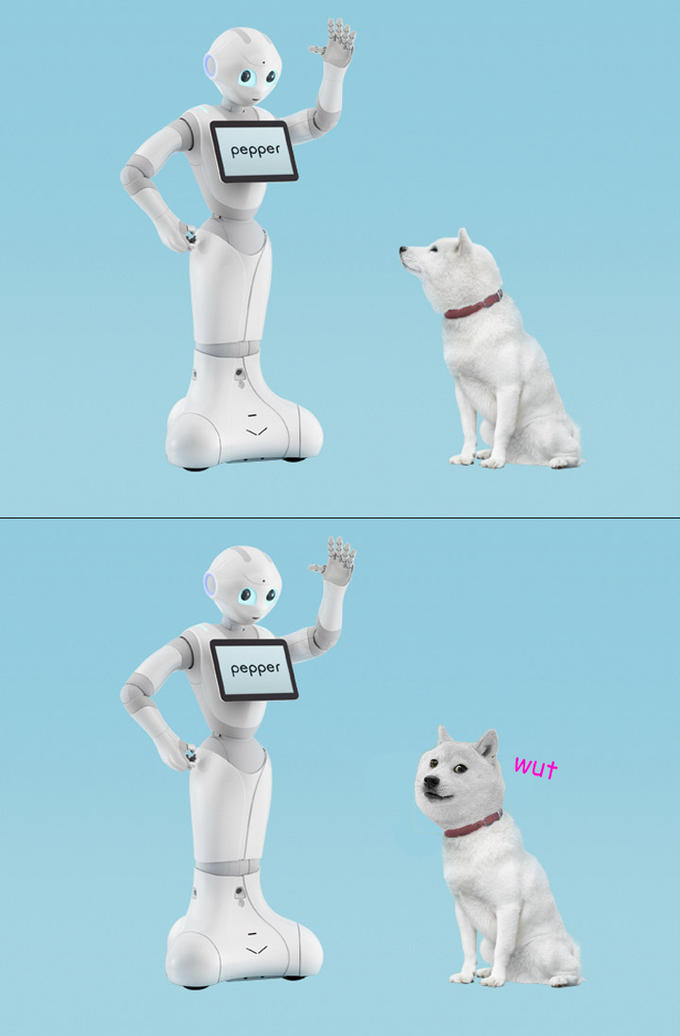 Doge and pepper