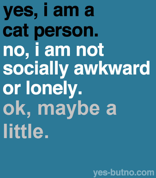 Yes, I am a cat person. No, I am not socially awkward or lonely. Ok, maybe a little.