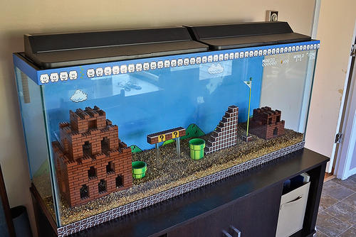 Most Epic Fish Tank EVER!
