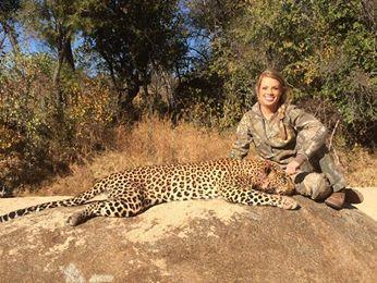 Cheetah Death
