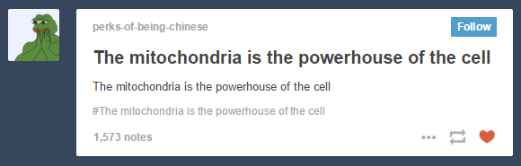 The Mitochondria Is The Powerhouse Of The Cell Vine Ekbooks Org
