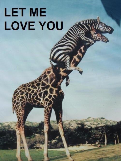 4cb image 895090] let me love you know your meme