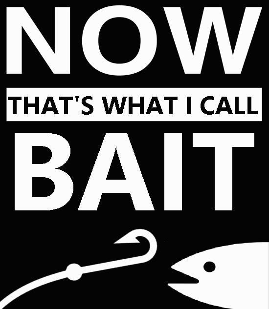 Image result for bait meme