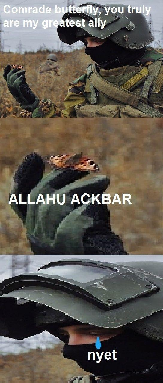 Comrade Butterfly | Allahu Akbar | Know Your Meme
